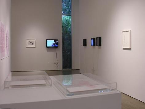 León Ferrari, Luis Roldan, Fabiana Cruz, Gabriel de la Mora, Sicardi Gallery installation view, 2008