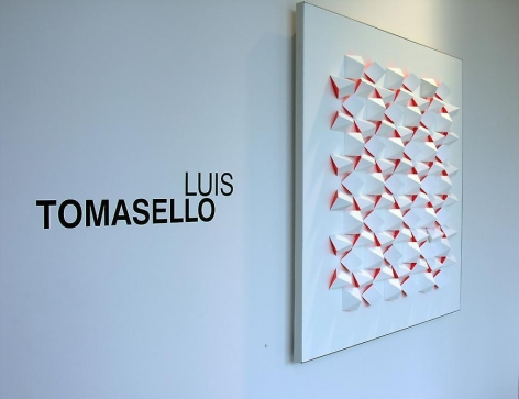 Luis Tomasello, Sicardi Gallery installation view, 2007
