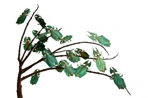 Maria Fernanda Cardoso, Green leaves, Edition 2/3, 2010.  Archival pigment print on 300g watercolor paper, 15 3/4 x 23 5/8 in.