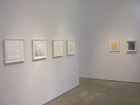 Luiz Roldan, Arthur Luiz Piza, Marked Pages, Sicardi Gallery installation view, 2006