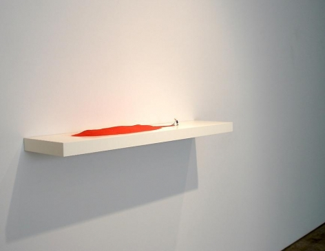 Liliana Porter, Sicardi Gallery installation view, 2009