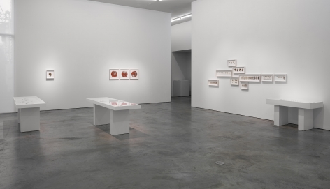 Installation view ofGustavo Diaz's2020exhibitionIncompleteness: The Poetics of the Intangibleat Sicardi | Ayers | Bacino.