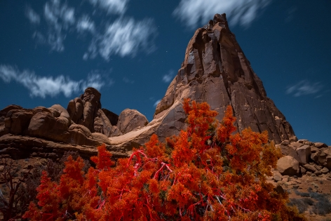 Arches National Park, 2020, 40 x 60 inch c-print