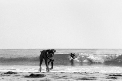 Kyle and Dog, 2013, 	16 x 24 inch pigment print