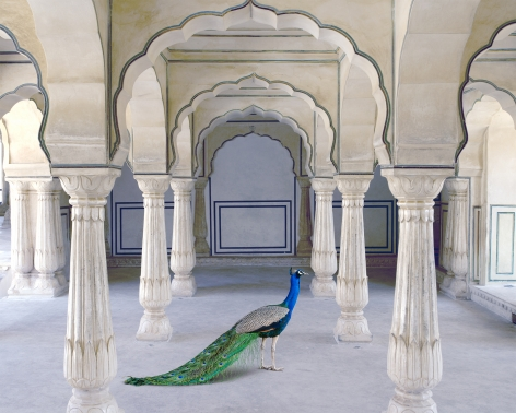 A Moment of Solitude, Amer fort, Amer, 2021, 23.5 x 30 inch pigment print - Edition of 5