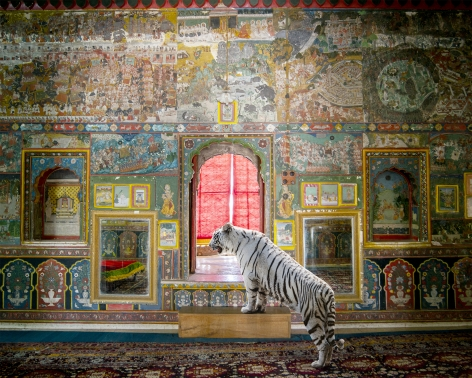 Guarding Honour, Kota City Palace, Kota, 2020, 23.5 x 30 inch pigment print - Edition of 5