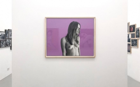Lucy, Lavender. 2017, 45 x 36 inches