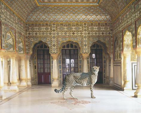The Return of the Hunter, Chandra Mahal, Jaipur Palace, Jaipur, 2012, Archival pigment print