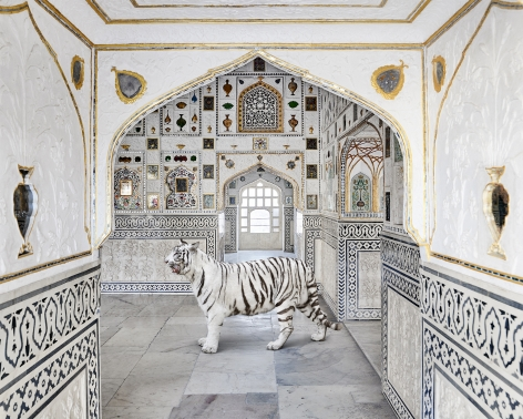 Tiger Breath, Sheesh Mahal, Amer Fort, 2020, 23.5 x 30 inch pigment print - Edition of 5