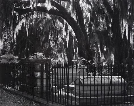 Bonaventure Cemetary, Louisiana, 1941.