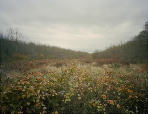 Isaac Wingfield. Untitled from the series Searching for Home.  2009.  Archival pigment print.  4 x 5 inches.