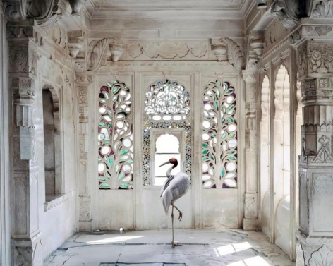A Place Like Amravati, Udaipur City Palace Udaipur 2, 2012, 	23.5 x 30 inch archival pigment print