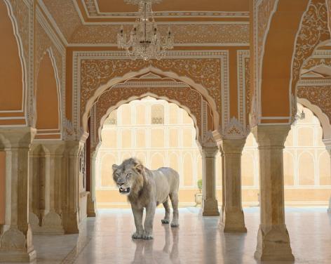 Karen Knorr, The Last Lion,Diwan-i-Khas, Jaipur City Palace, Jaipur, 2013
