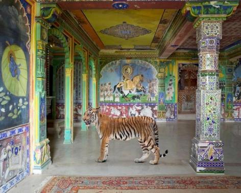 Arjuna's Path, Junha Mahal, Dungarpur, 2014, 48 x 60 inch archival pigment print