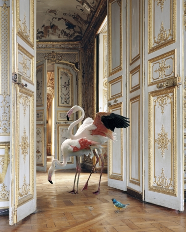 The Grand Monkey Room (2), 2006, Archival pigment print