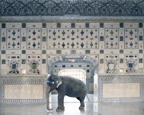 Karen Knorr, Temple Servant, Amber Fort, Jaipur, 2014