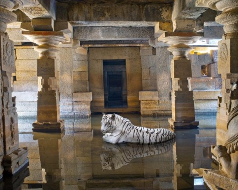 Karen Knorr, Bakhti and the Path of Saints, Shiva Temple, Hampi, 2012