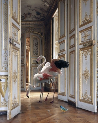 The Grand Monkey Room (2), 2006, 	26 x 30 inch pigment print