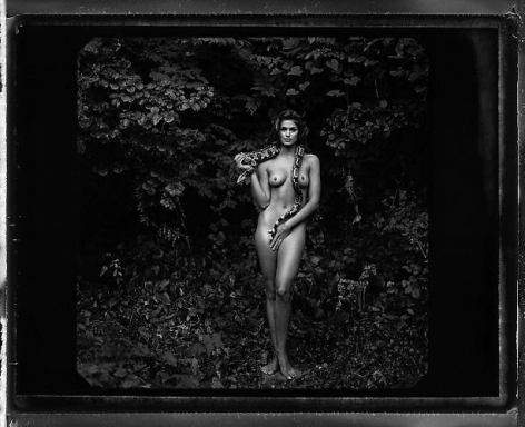 Annie Leibovitz. Cindy Crawford.  1993 / printed 2009.  Pigment print.  20 x 24 inches.