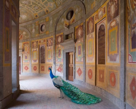 Heaven's Vault Villa Farnese, Caprarola, 23.5 x 30 inch archival pigment print