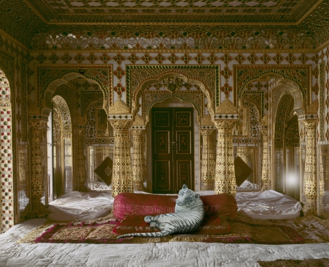 The Peacemaker, Chandra Mahal, Jaipur Palace, 2010, Archival pigment print