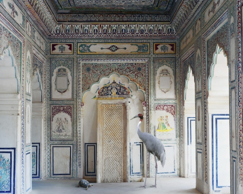 Amrita's Message, Nagaur Fort, Nagaur, 2012, Archival pigment print