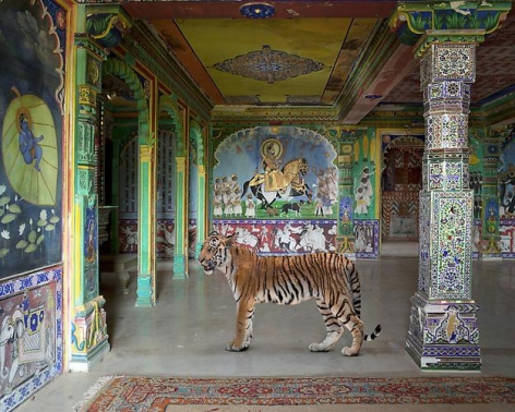 Arjuna's Path, Junha Mahal, Dungarpur