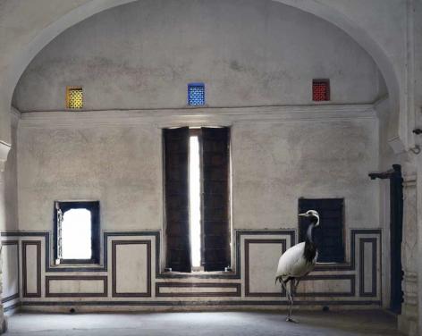 Light of the World, Zanana Room, Nawalgarh, 2010, Archival pigment print
