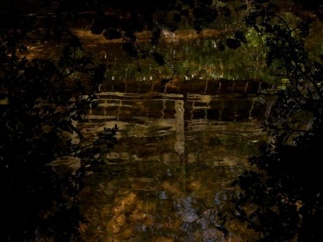 Water Drop Wort Bridge, 2013, 42 x 60 inch digital c-print-Edition of 5