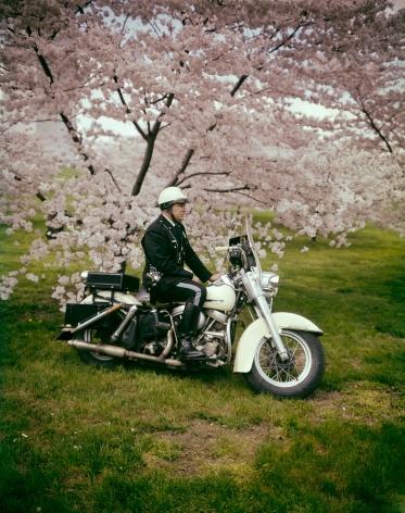 Springtime, Washington D.C.1965, 20 x 16 inch dye transfer print