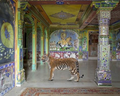 Arjuna's Path, Junha Mahal, Dungarpur, 2014, Archival pigment print