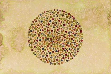 Shiva Ahmadi, Circle