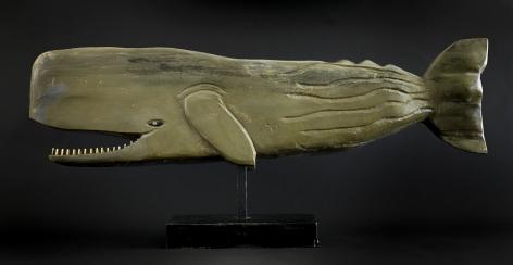Albert Hoffman Toothed Whale, n.d.