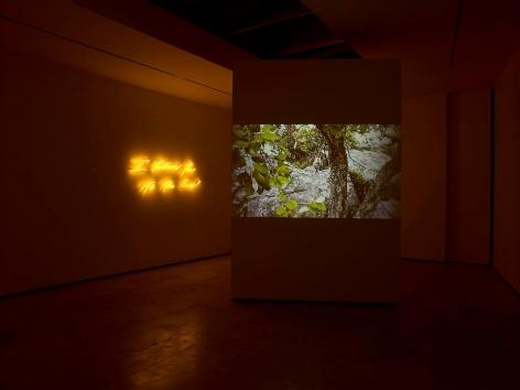 Tracey Emin: I Followed You To The Sun