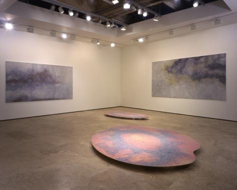 TERESITA FERNANDEZ Installation at Lehmann Maupin Gallery View 3.