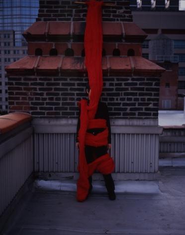 塞西莉亞·維納 Quipu vivo, 2006