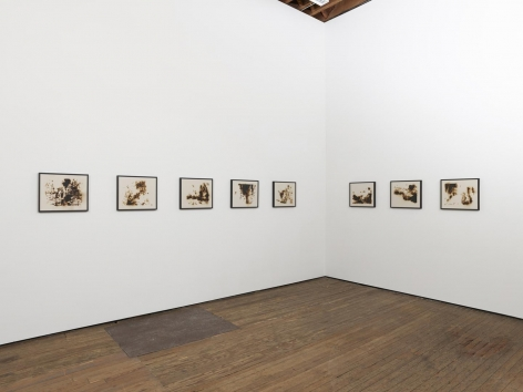 Teresita Fernández, Fire (America) installation view 2