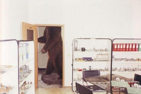 Brown Bear, Bubenreuth, Germany, 2002