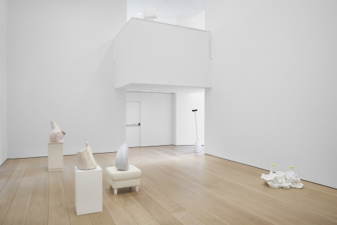Installation view of Erwin Wurm's exhibition Yes Biological at Lehmann Maupin, New York, 2020, View 2