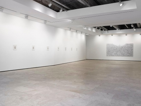 Tim Rollins and K.O.S.: On the Origin Installation view 3