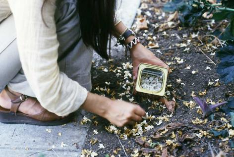 塞西莉亞·維納 Otoño / Autumn, 1971