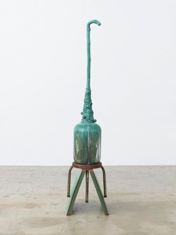 NARI WARD, Bottle Field, 2013