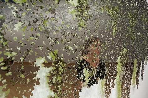 TERESITA FERNANDEZ Portrait (Blind Landscape) (detail), 2008