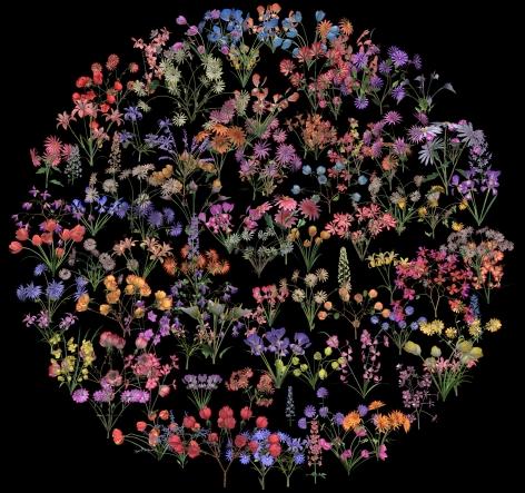 珍妮弗·æ–½æ³°æ©åŽæ™® Botanic 2 (film still), 2015