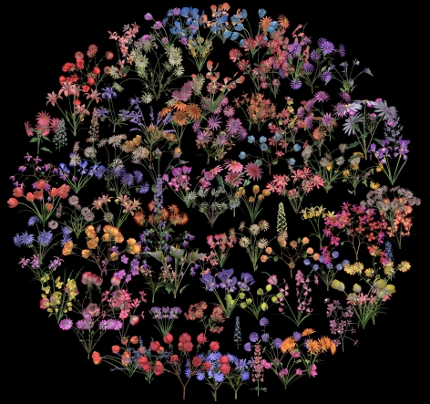 JENNIFER STEINKAMP Botanic 2 (film still), 2015