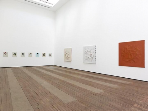 Adriana Varejão, Kindred Spirits Installation view 2
