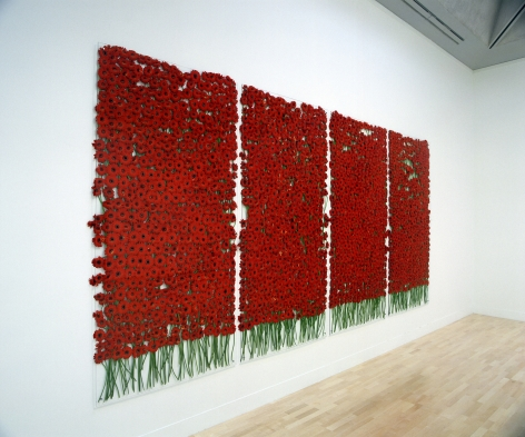 preserve 'beauty', 1991/2003