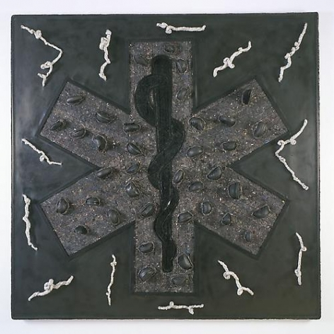 NARI WARD Star of life, 2010