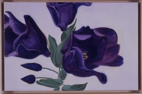 DAVID SALLE, Lisianthus Purple, 2002