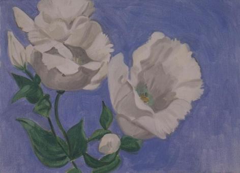 DAVID SALLE, Lisianthus White, 2002